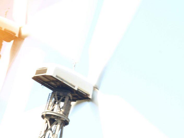 Wild wind — Tarifa, 2012