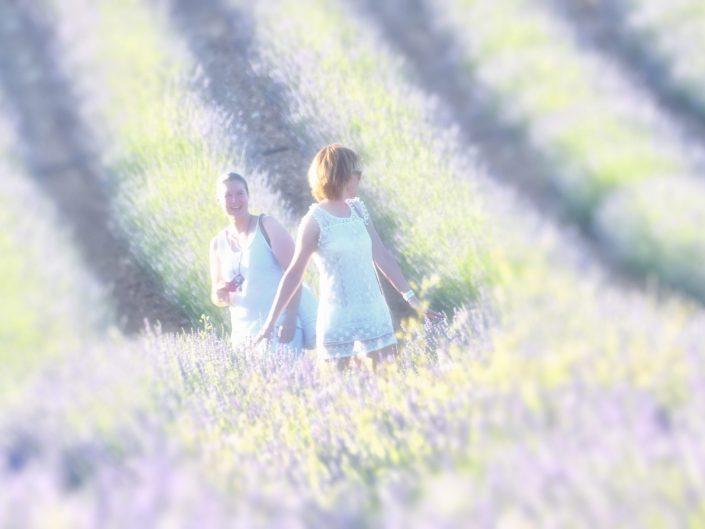 Lavender photoshooting — Brihuega, 2018
