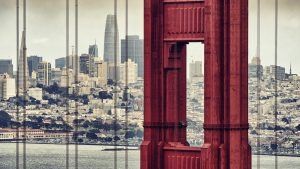 Dominant — San Francisco, 2018